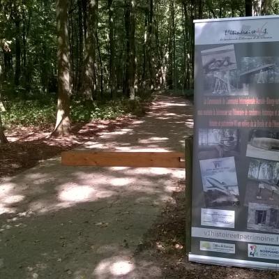 Visite exceptionelle au Bois de la Vierge