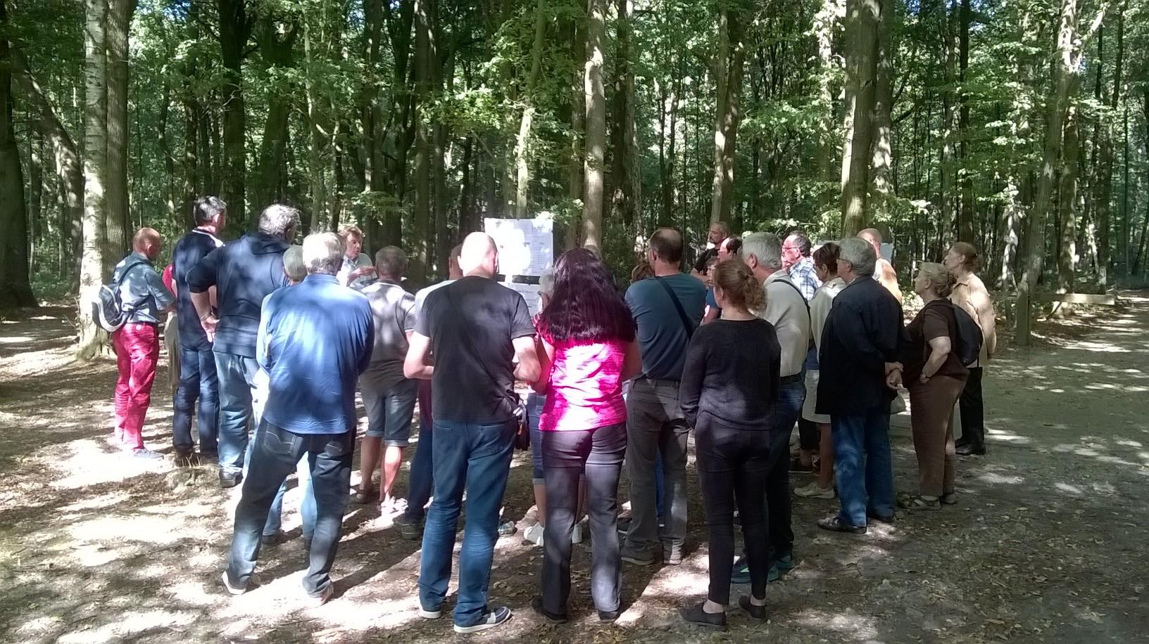Bois de la Vierge - JEP 2019©Roussel (3)